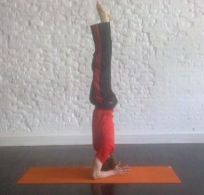 Headstand: How-to, Tips, Benefits - Yoga Poses for Beginners ...